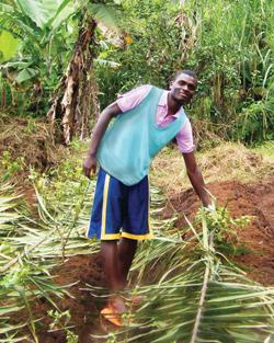 Boy-Farming